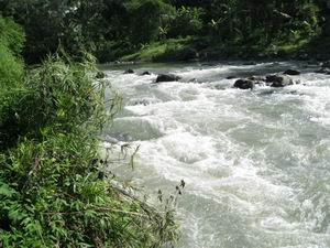 http://annova.files.wordpress.com/2008/12/resize-of-sungai-elo.jpg